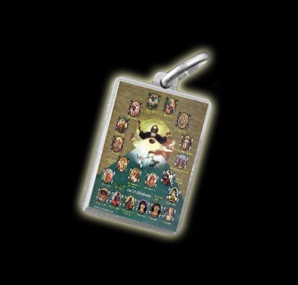 Medaglia - Immagine a colori 21 DIVISIONI - argento 925
