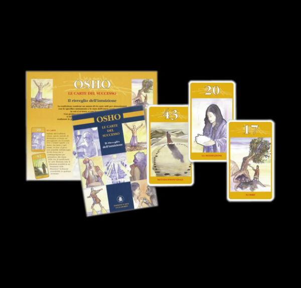 Cards of Success - Deck of cards and book