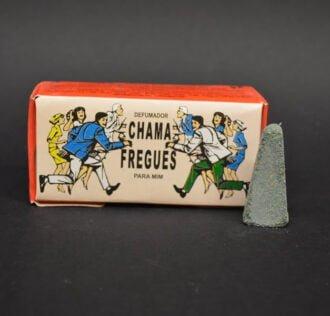 CHAMA FREGUEZ - Customers Magnet