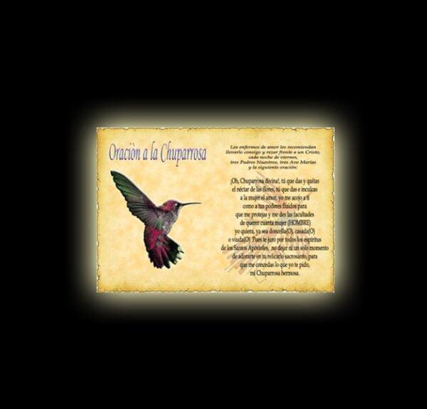 Chuparrosa prayer - parchment