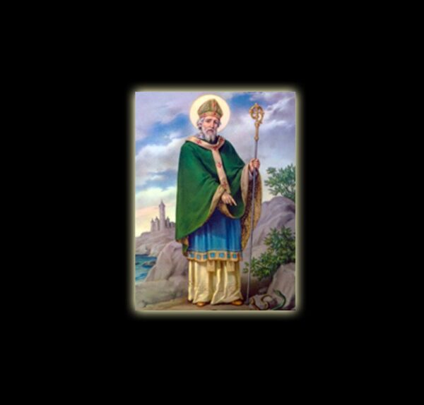 Saint Patrick - Damballah -  - sublimation ON ALUMINUM 20 X 15 CM